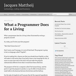 what a programmer does for a living