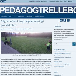 Några tankar kring programmering i grundskolan – Pedagog Trelleborg