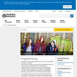 Programmering - Skellefteå kommun