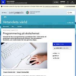Programmering på skolschemat 17 augusti kl 12:10 - Vetandets värld