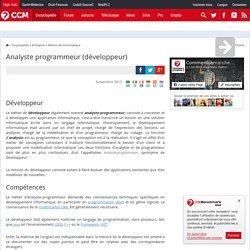 Analyste programmeur (développeur)
