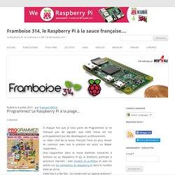 Programmez! Le Raspberry Pi à la plage…