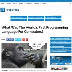 What Was The World's First Programming Language For Computers?