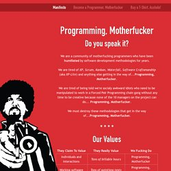 Programming, Motherfucker - StumbleUpon