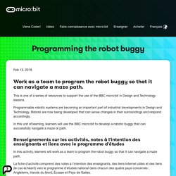 Programming the robot buggy