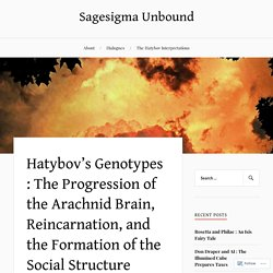 Hatybov's Genotypes : The Progression of the Arachnid Brain, Reincarnation, and the Formation of the Social Structure – Sagesigma Unbound