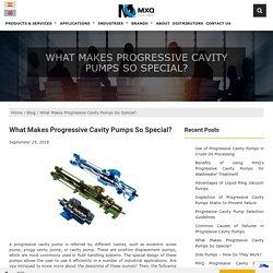 What Makes Progressive Cavity Pumps So Special?