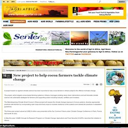 FARMINGPORTAL_CO_ZA 16/09/15 New project to help cocoa farmers tackle climate change