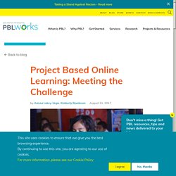 Project Based Online Learning: Meeting the Challenge
