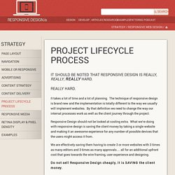 Project Lifecycle Process — Responsive Web Design