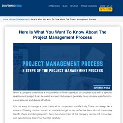 What Are Project Management Processes and Phases?