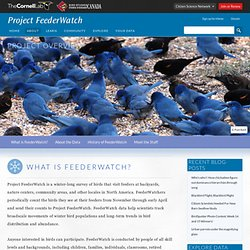 Project Overview - FeederWatch