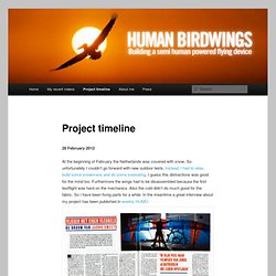 Project timeline | Human Birdwings