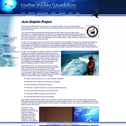 JoJo Project - Marine Wildlife Foundation