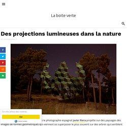 Des projections lumineuses dans la nature