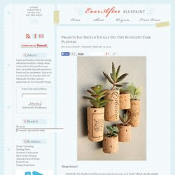 Projects You Should Totally Do: Tiny Succulent Cork Planters