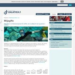 Miljøgifte - Galathea 3