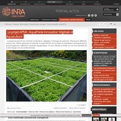 INRA 13/03/15 Le projet APIVA : AquaPonie Innovation Végétale et Aquaculture