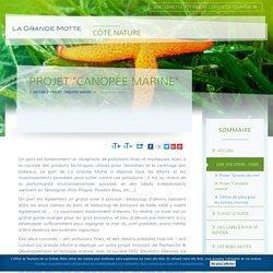 """Projet """"Canopée marine"""" - Office de Tourisme de La Grande Motte"""