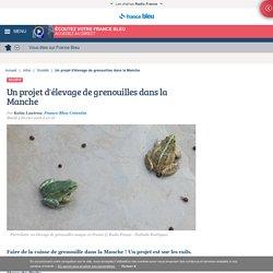 FRANCE BLEU 02/02/16 Un projet d'élevage de grenouilles dans la Manche