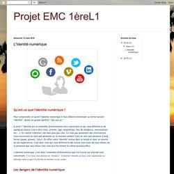 Projet EMC 1èreL1: L'Identité numérique