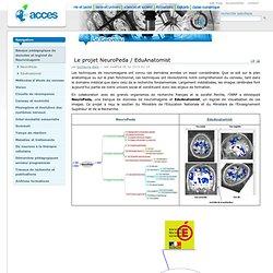 Le projet NeuroPeda / EduAnatomist