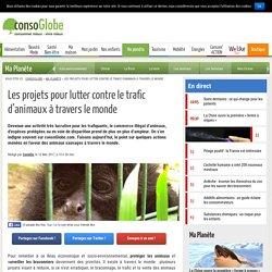 Les projets pour lutter contre le trafic d'animaux à travers le monde