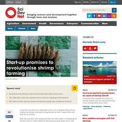 Start-up promises to revolutionise shrimp farming