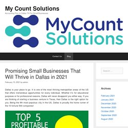 Promising Small Businesses That Will Thrive in Dallas in 2021 – My Count Solutions