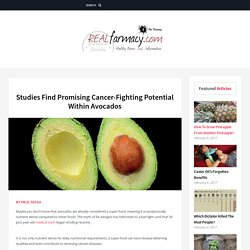 Studies Find Promising Cancer-Fighting Potential Within Avocados – REALfarmacy.com