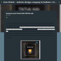 Promote your brand with TikTok ads.
