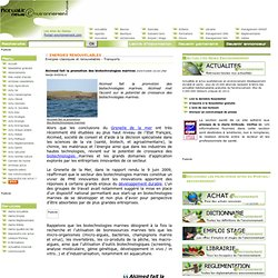 Alcimed fait la promotion des biotechnologies marines