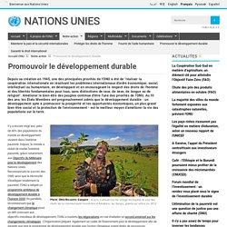 ONU et développement durable