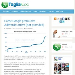 Come Google promuove AdWords: arriva (not provided)