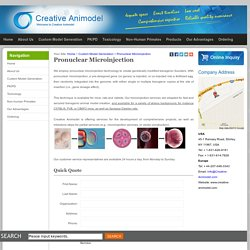 Pronuclear Microinjection - Creative Animodel