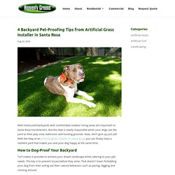 Yard Dog-Proofing Advice from Artificial Grass Installer in Santa Rosa