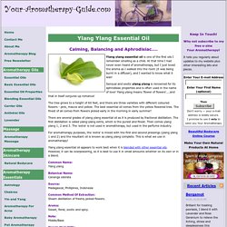 Ylang Ylang Essential Oil and Its Wonderful Properties And Uses In Aromatherapy.