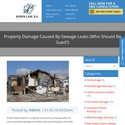 Property Damage Caused By Sewage Leaks (Who Should Be Sued?)