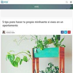 5 tips para hacer tu propia minihuerta si vives en un apartamento - Vix