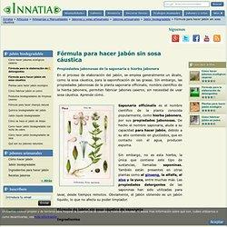 Fórmula para hacer jabón sin sosa cáustica :: Propiedades de la saponaria officinalis, nombre científico de la hierba jabonera