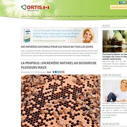 La propolis : un remède naturel au secours de plusieurs maux