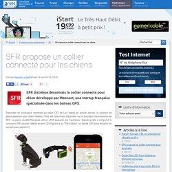 SFR propose un collier connecté pour les chiens