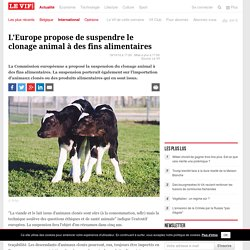 L'Europe propose de suspendre le clonage animal à des fins alimentaires