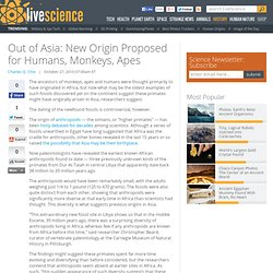 Out of Asia: New Origin Proposed for Humans, Monkeys, Apes
