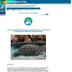 Service Ignores Ongoing Threats, Proposes to Downlist Manatees - Save the Manatee Club