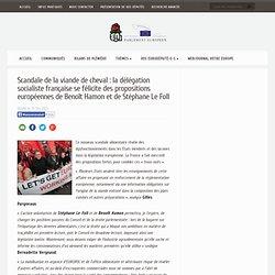 PS 15/02/13 Scandale de la viande de cheval : la délégation socialiste française se félicite des propositions européennes de Ben