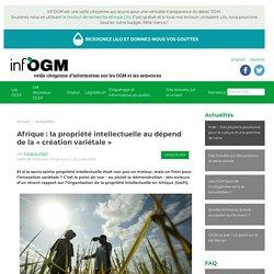Afrique : la propriété intellectuelle au dépend de la création variétale