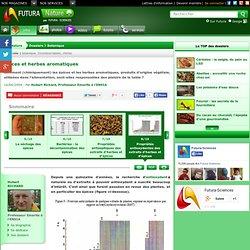 Propriétés antioxydantes des extraits d'herbes et d'épices