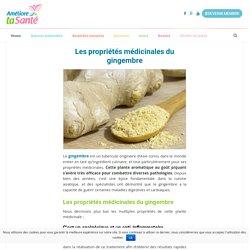Les propriétés médicinales du gingembre