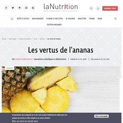 Ananas : bienfaits, vertus, santé et propriétés nutritives